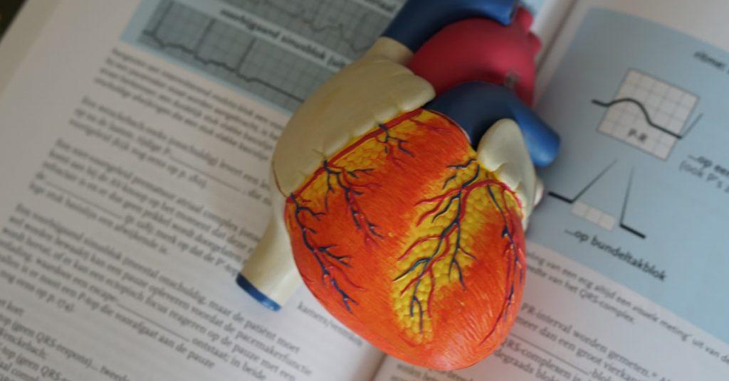 Agrīnā pacientu diagnostika un aritmiju skrīnings. Tehnoloģiju validācija caur ģimenes ārstu prizmu
